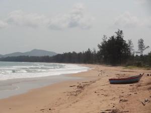 14.02.2013: Strandabschnitt
