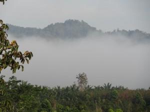 19.02.2013: Der Weg nach Patho durch die Berge, weg von der Golfküste, Richtung Andamanensee